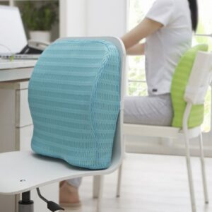 HealthSense (India) Soft-Spot BC 21 Orthopedic Backrest Cushion with Memory Foam for Study, Home, Office chair & Sofa with Lumbar Support for Back Pain Relief (Ice Blue)