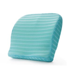 HealthSense (India) Soft-Spot BC 21 Orthopedic Backrest Cushion with Memory Foam for Study, Home, Office chair & Sofa with Lumbar Support for Back Pain Relief (Ice Blue) ewwwww