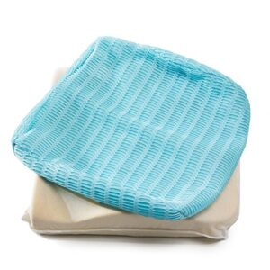 HealthSense (India) Soft-Spot BC 21 Orthopedic Backrest Cushion with Memory Foam for Study, Home, Office chair & Sofa with Lumbar Support for Back Pain Relief (Ice Blue) sed