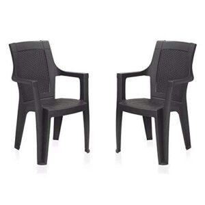 Nilkamal Plastic Premium Chair Set of 2 (Brown)
