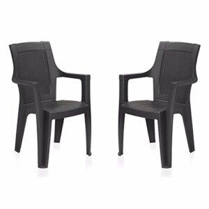 Nilkamal Plastic Premium Chair(Black, Set of 2)