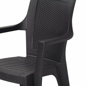 Nilkamal Plastic Premium Chair(Black, Set of 2) 2
