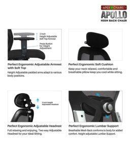 SAVYA HOME APEX Chairs Apollo Chrome Base High Back Office Chair Adjustable Arms (Blweack)